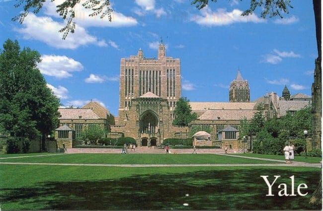 yale-universitesi